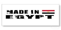 جامعة الإسكندرية ترفع شعار
